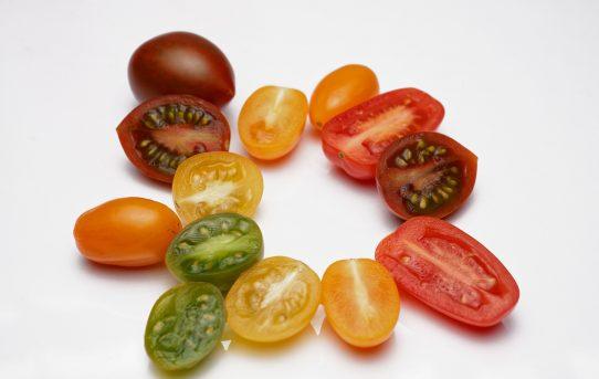 Tutti I Colori Del Pomodoro